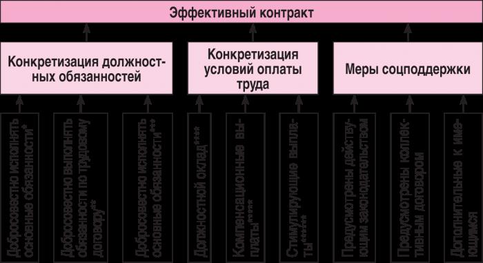 Эффективный контракт в вузе образец