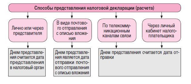 Правила предоставления налоговой декларации
