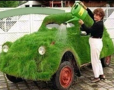 Не взяв бумагу из правления, огородник, продающий зелень, рискует попасть на налог