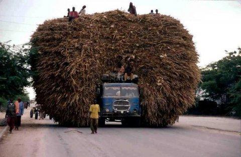 ВС против минимизации расходов путем привлечения к перевозкам ИП-работника фирмы