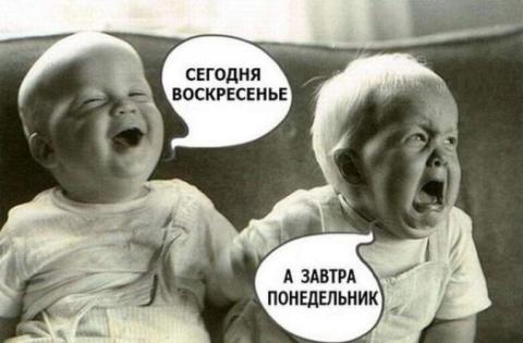 Число оптимистов среди российских финдиректоров резко сократилось