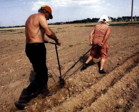 Земельный налог физлица увеличен в ходе налоговой проверки: будет ли перерасчет