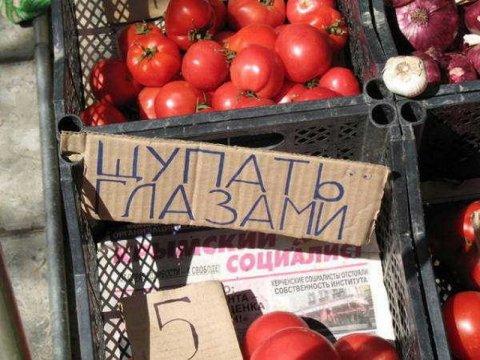 В Россию поступила первая партия турецких томатов
