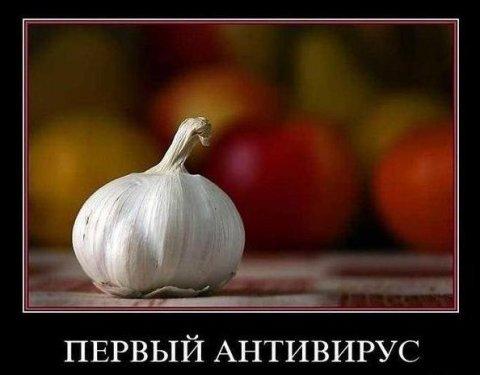 В России введут полный запрет на госзакупки зарубежных антивирусов