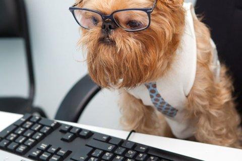 Медосмотры офисных работников необходимы, если доказана длительность работы с ПК