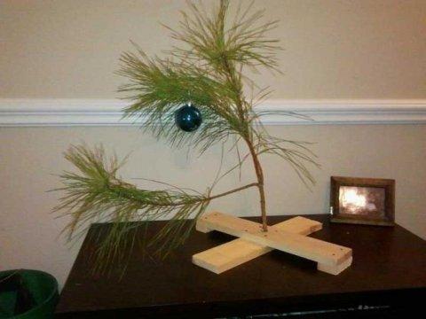Россияне выбирают более дорогие новогодние елки