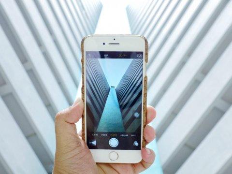 Эксперты: количество покупок со смартфонов за год выросло на треть